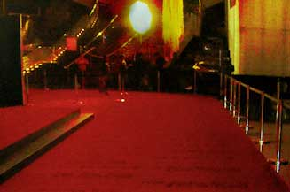 Hire red carpet for a corporate function